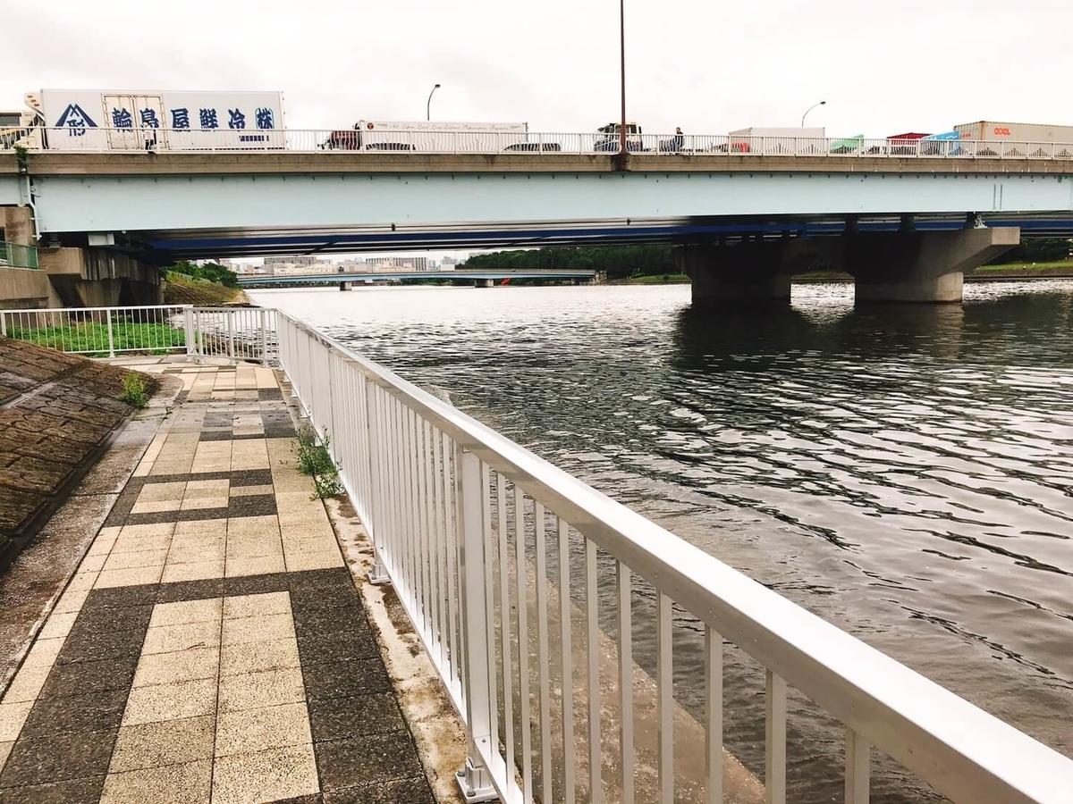 京浜運河 大和大橋のシーバス狙いの足場はいい