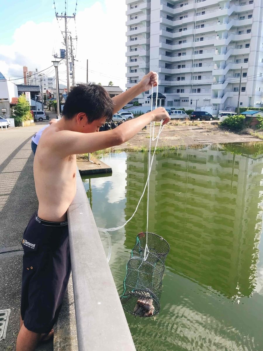 新加茂川うなぎ
