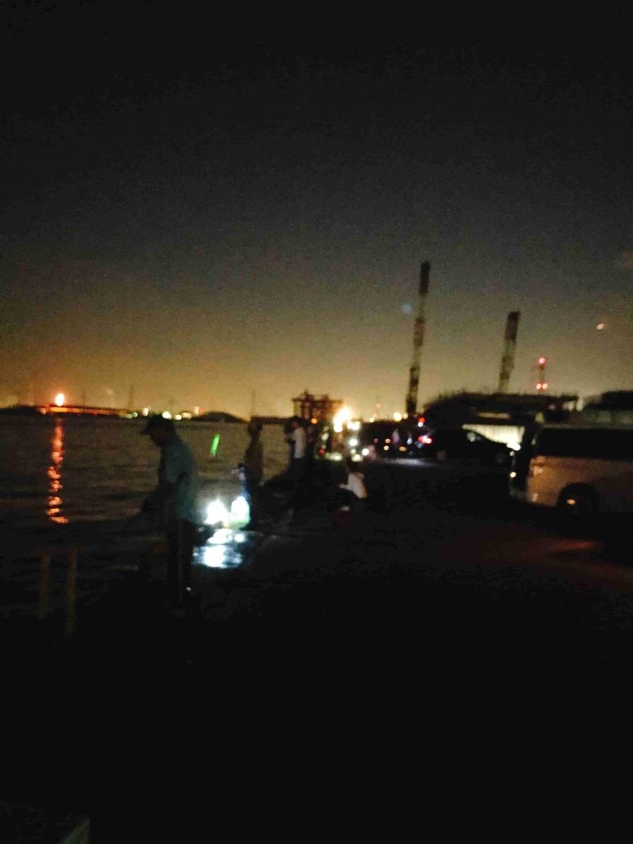 富津新港は夜釣りでも人気
