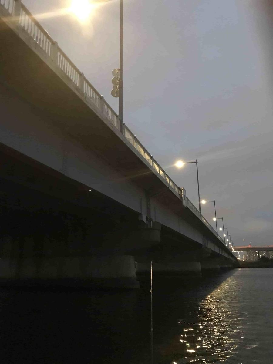 平井大橋夜釣り