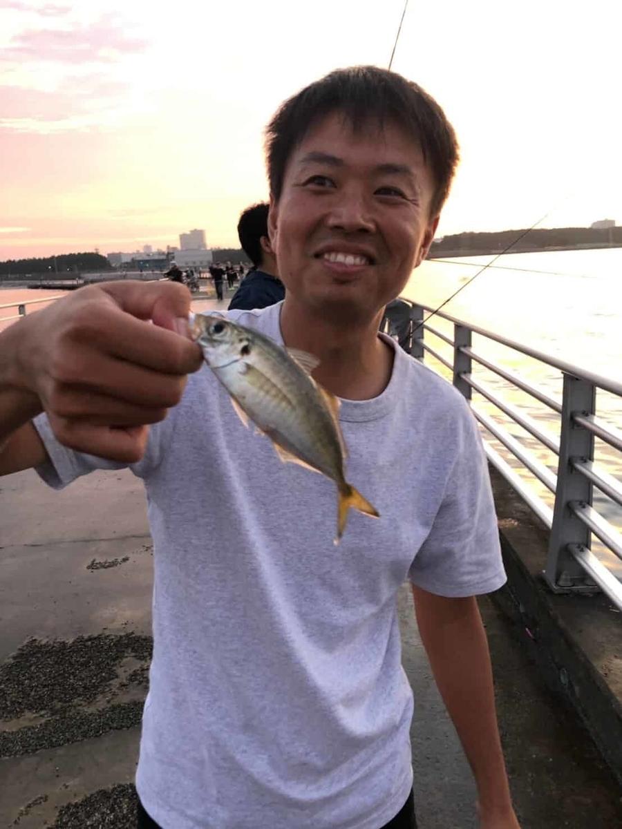 検見川浜アジ