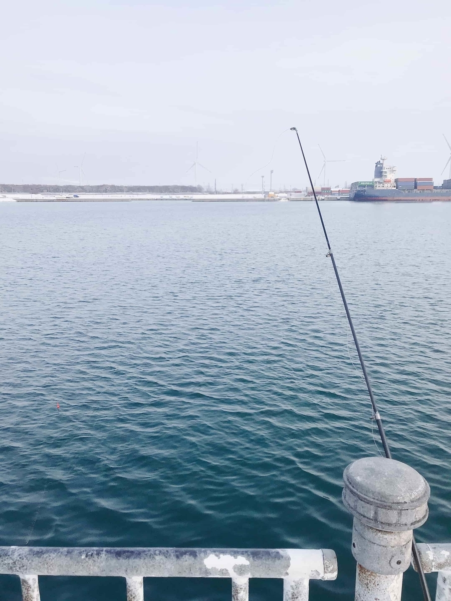 石狩湾新港ホッケ釣り