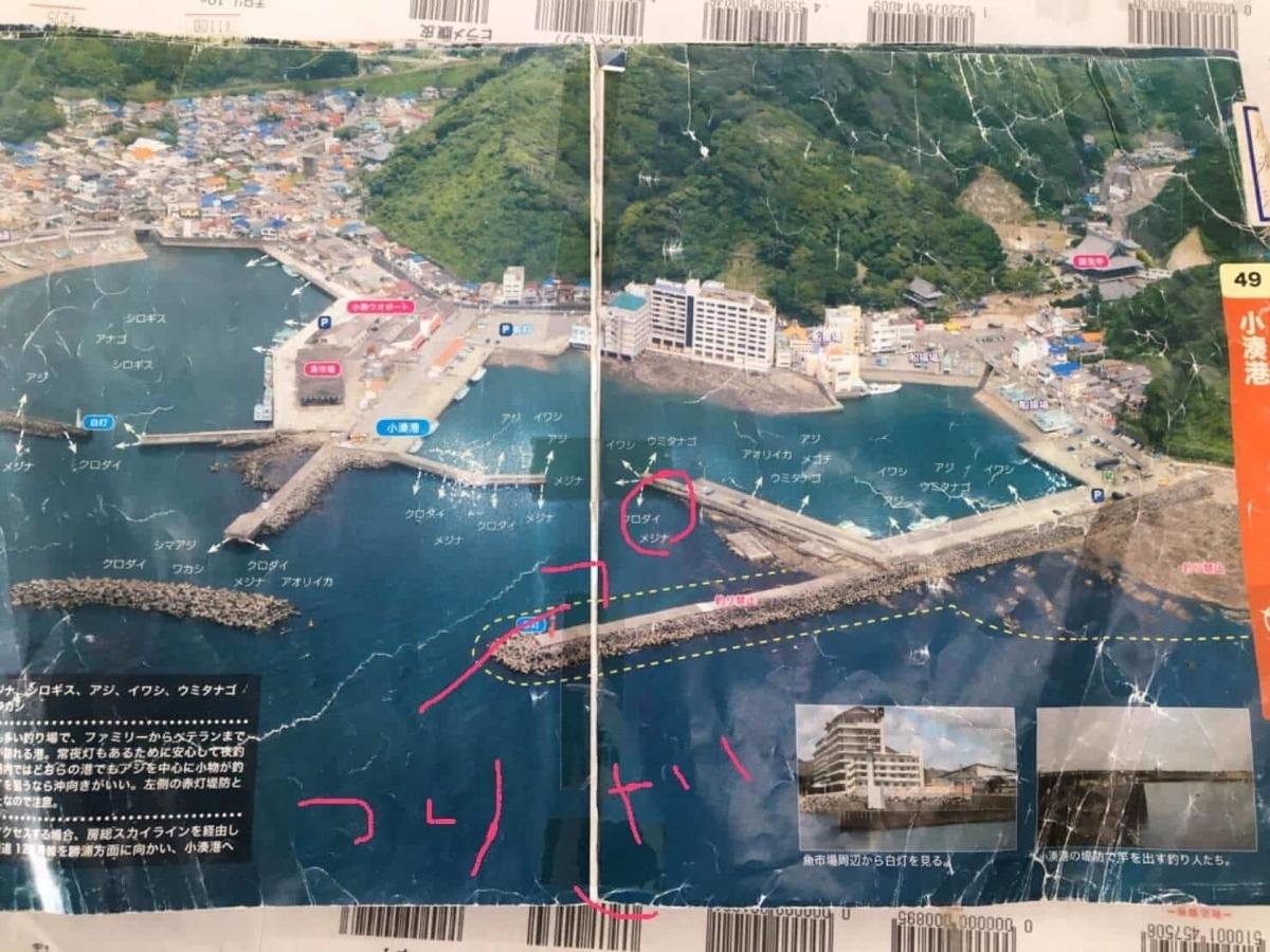 小湊港ヒラマサポイント
