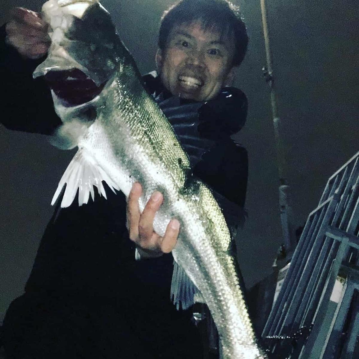 旧江戸川シーバス/バチ抜け