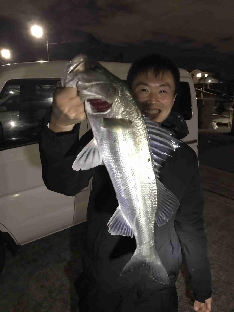 旧江戸川シーバス