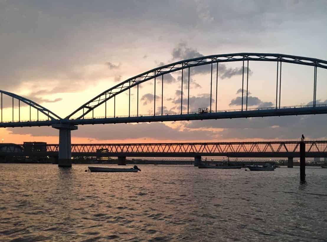 江戸川放水路釣り林遊船メバル