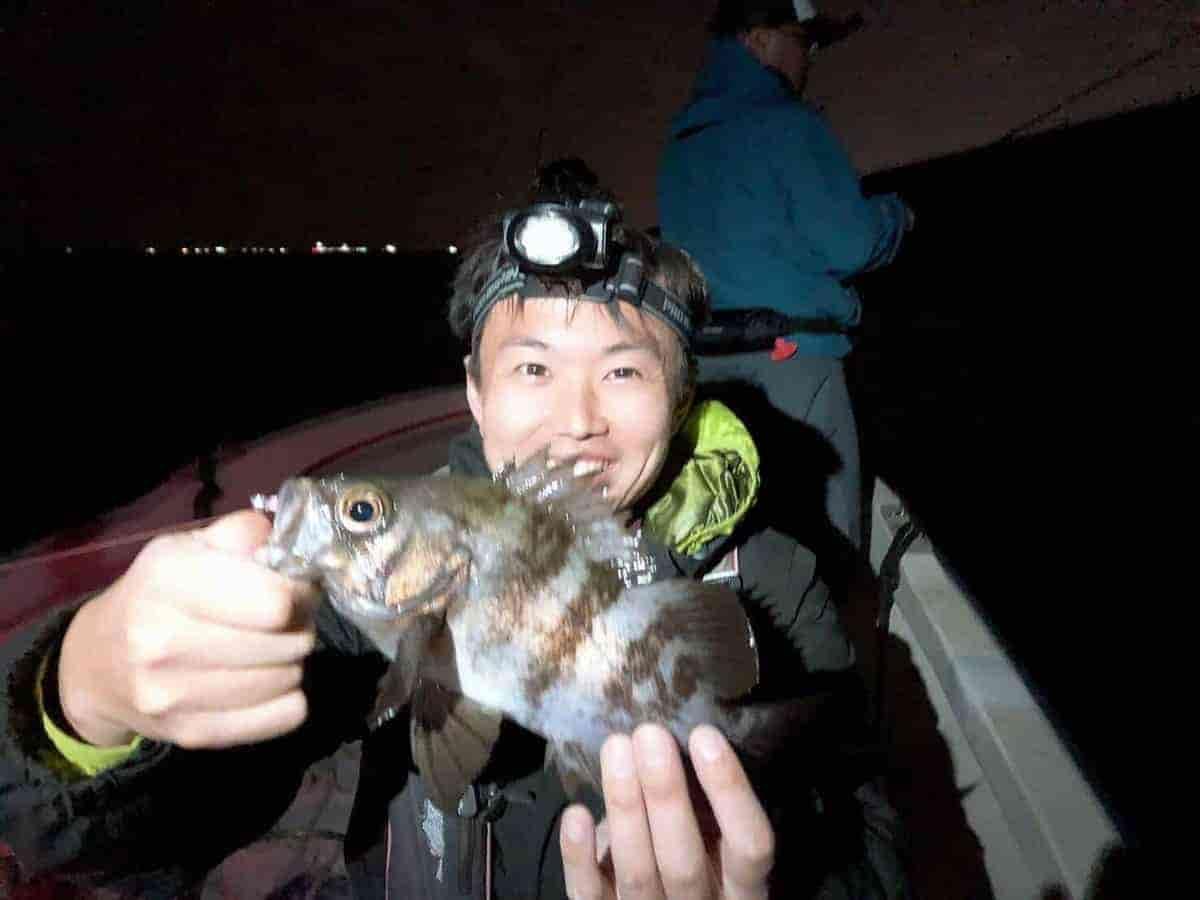 東京湾メバル釣り