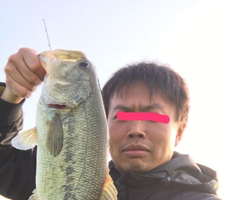 霞ヶ浦水系にてブラックバスを釣った話