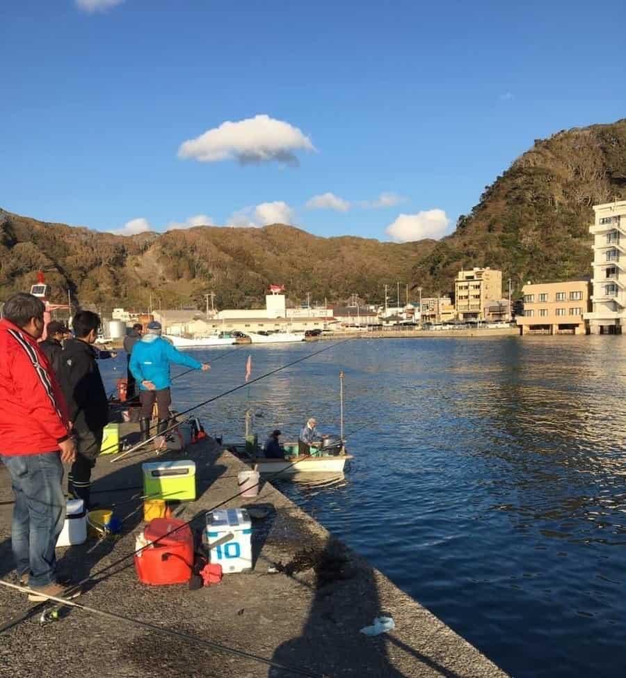 小湊港アジ、カマス釣り