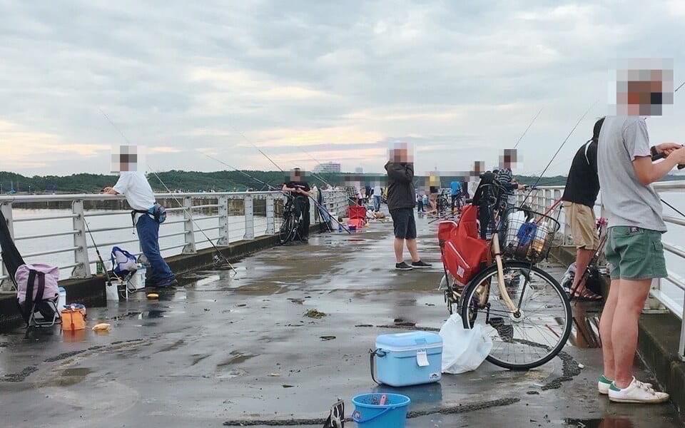 検見川浜突堤釣り