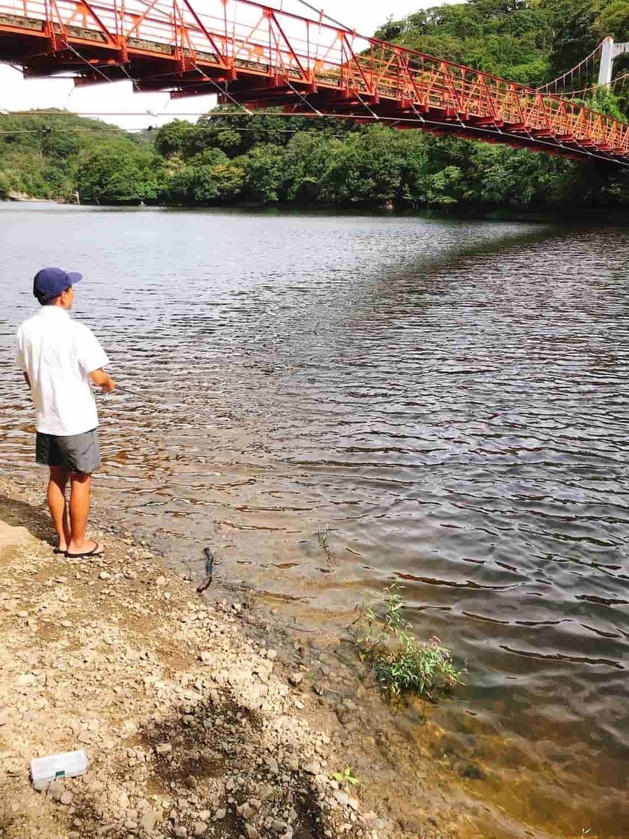 金山ダム釣り
