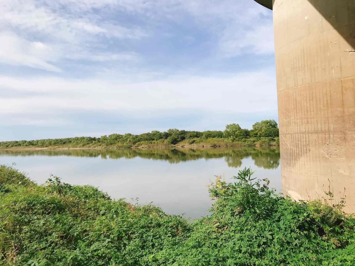 利根川:新大利根橋(しんおおとねばし)釣り