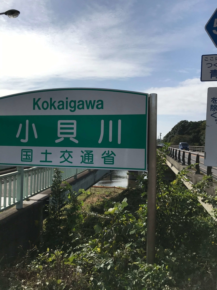 小貝川 常総橋 釣り