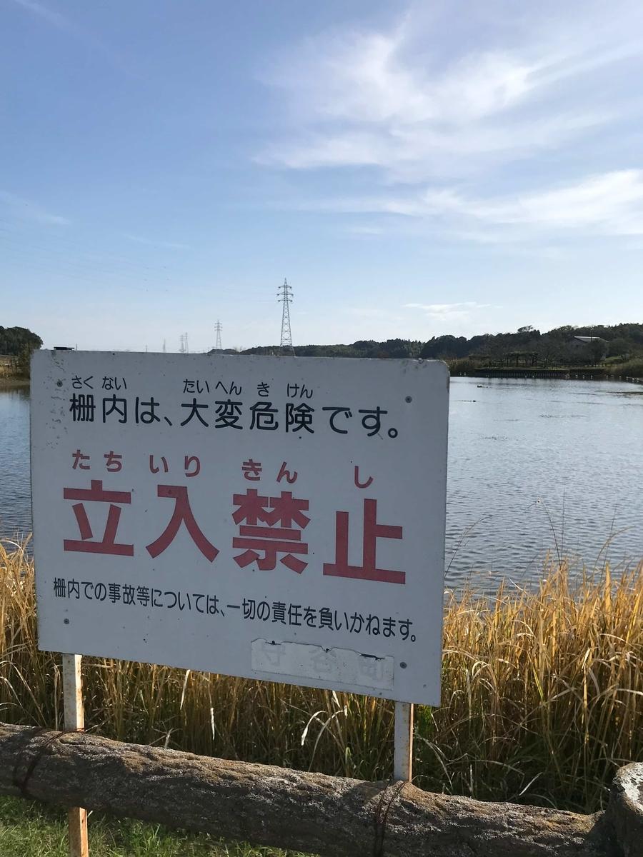 守谷沼 釣り