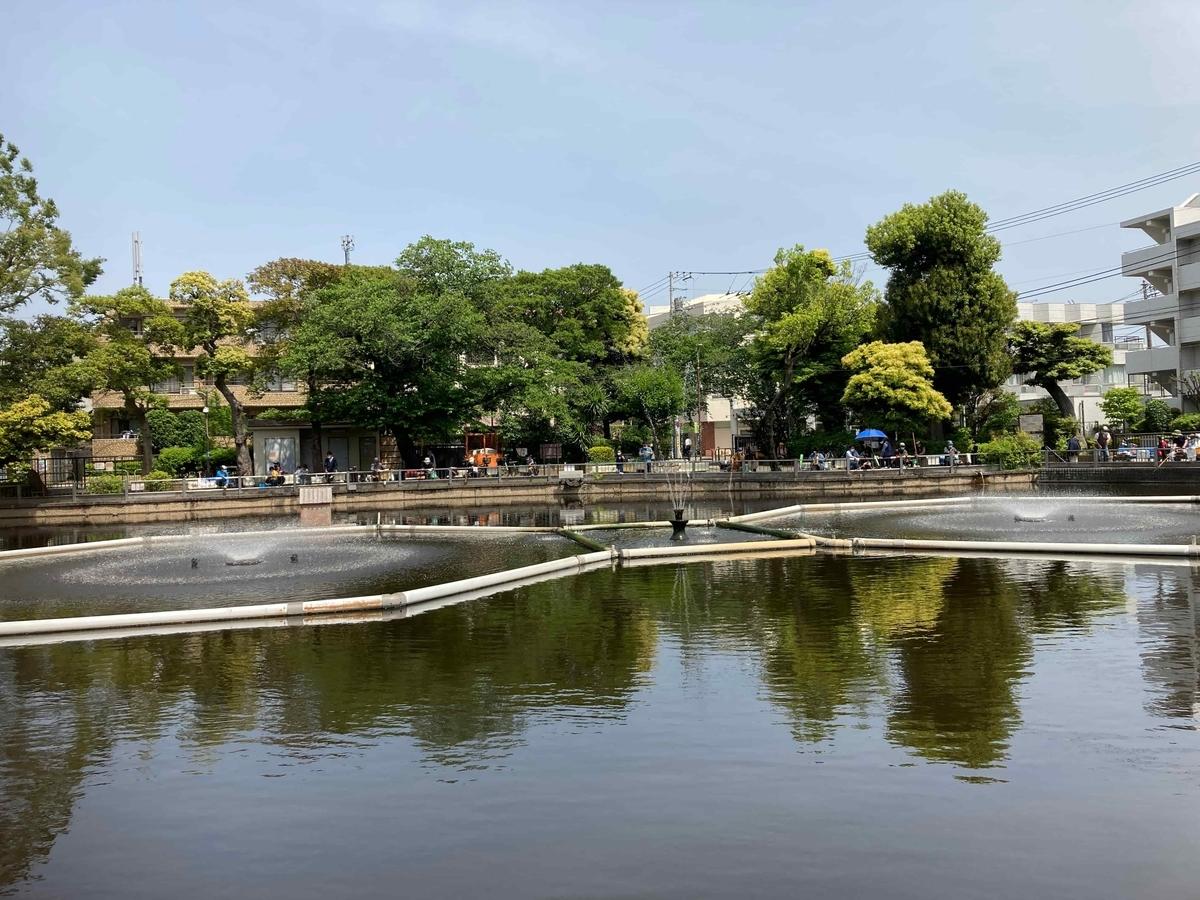 清水池公園釣り