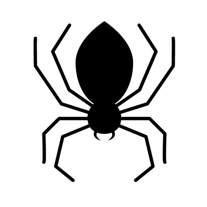 SEO Spiderとは?