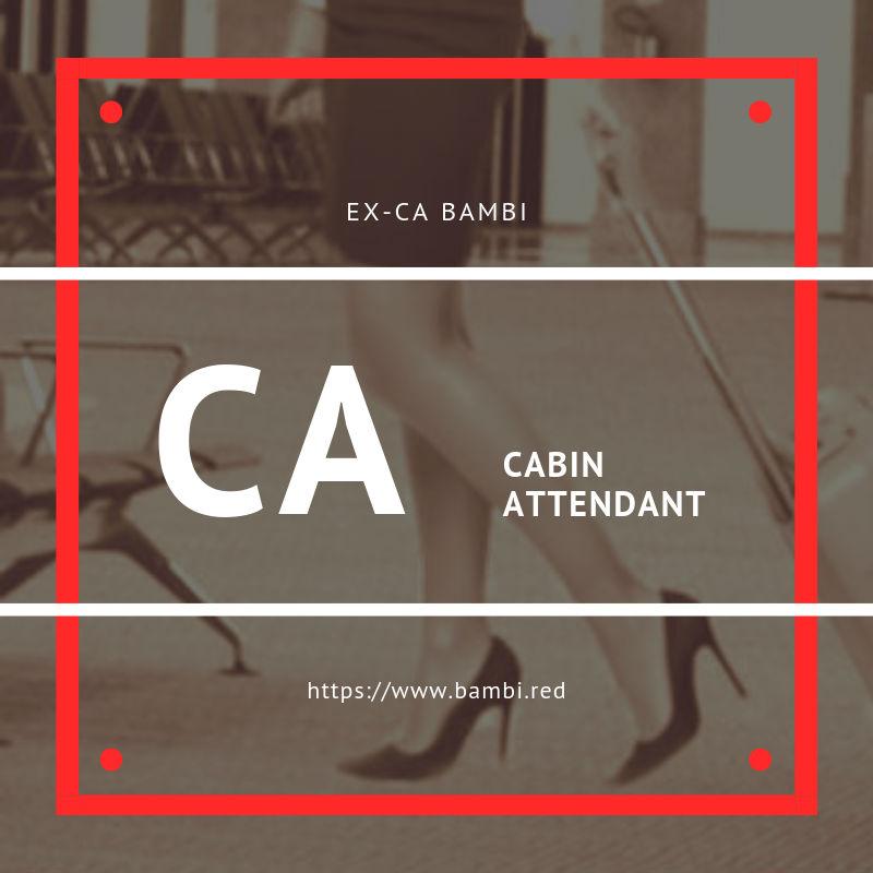 CA cabin attendant