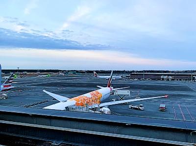 コロナ禍の成田空港。手荷物検査場がやってない?お店、展望台、ラウンジ、チェックインカウンターの様子をレポート!