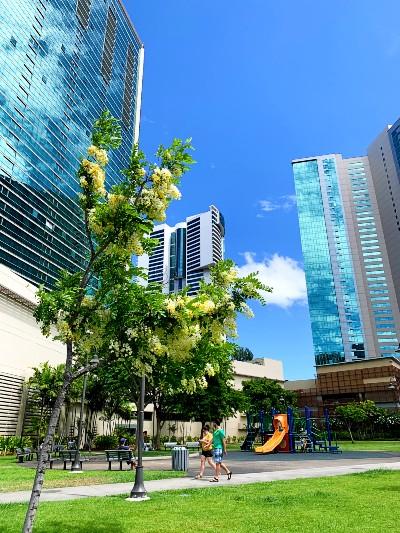 2021年最新版ハワイのホールフーズへの行き方アラモアナから徒歩10分