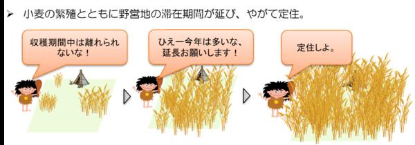 小麦の繁殖とともに定住するサピエンス|サピエンス全史