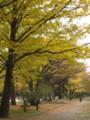 [仙台]西公園