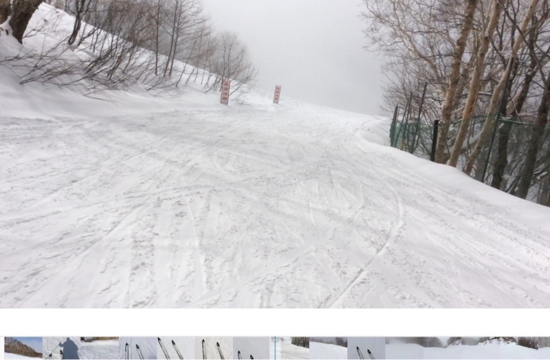 Ski動画