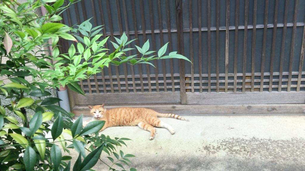 f:id:zusshimi_gundan:20161204160902j:plain