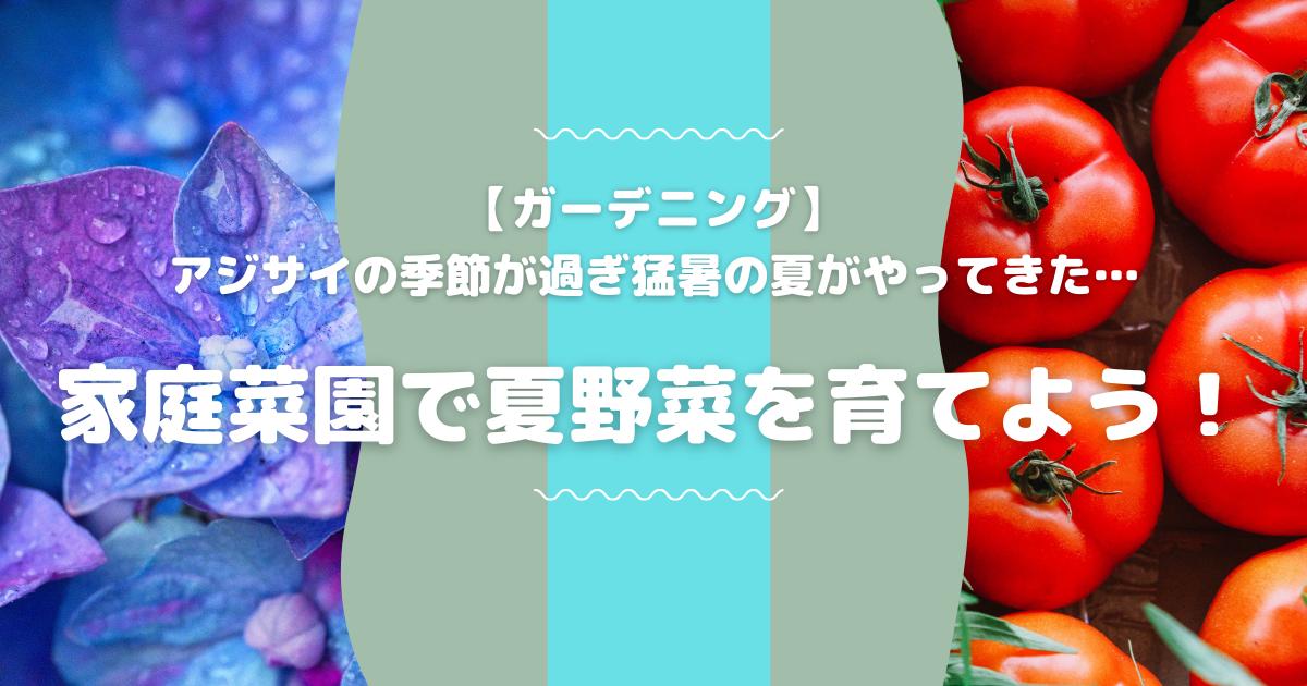 f:id:zuwaiebimi:20210719214509p:plain