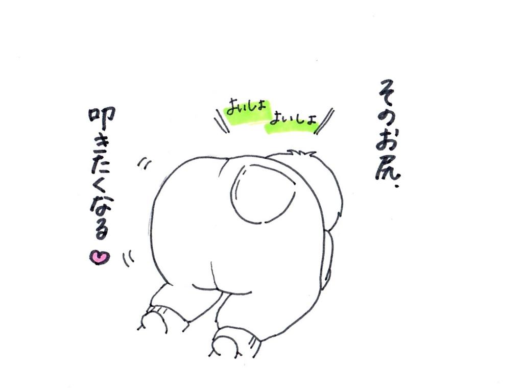 f:id:zuzukocha:20170120084309j:plain