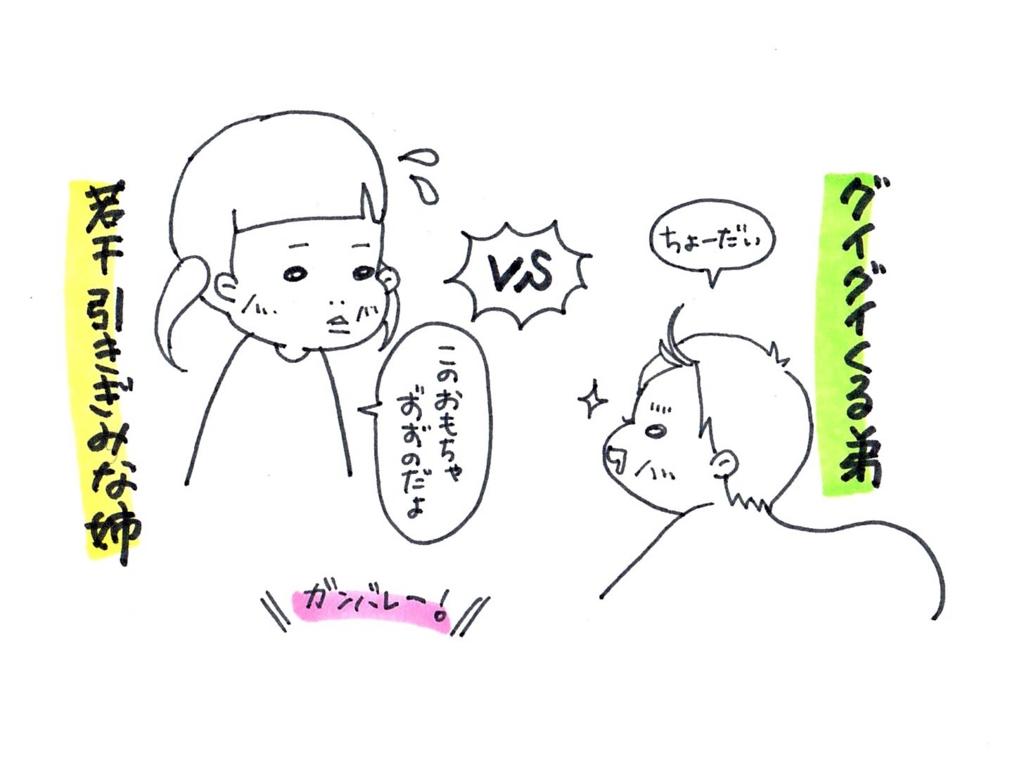 f:id:zuzukocha:20170120085202j:plain