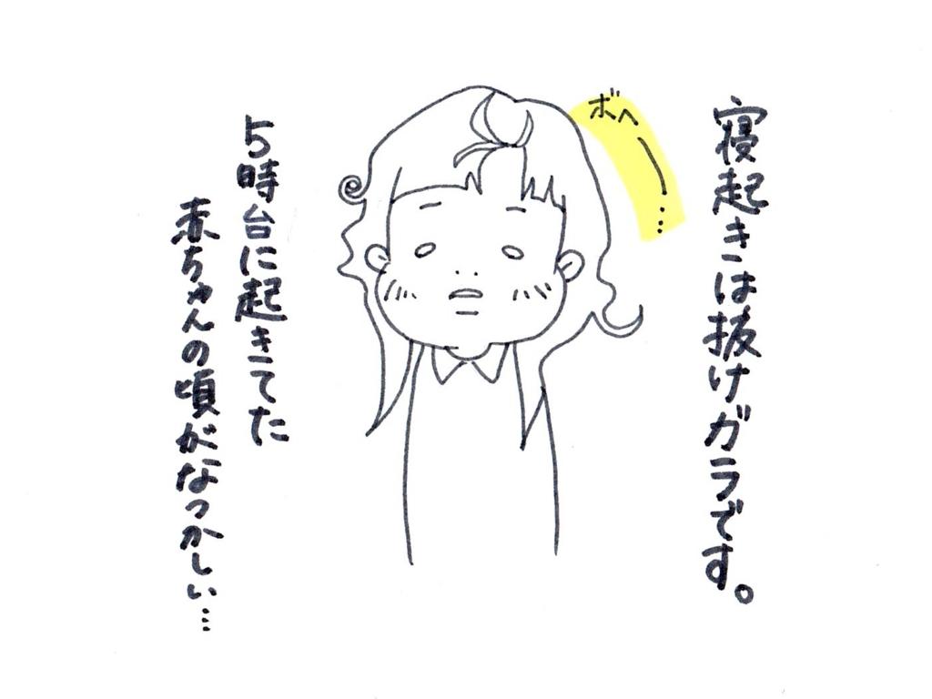 f:id:zuzukocha:20170127171209j:plain