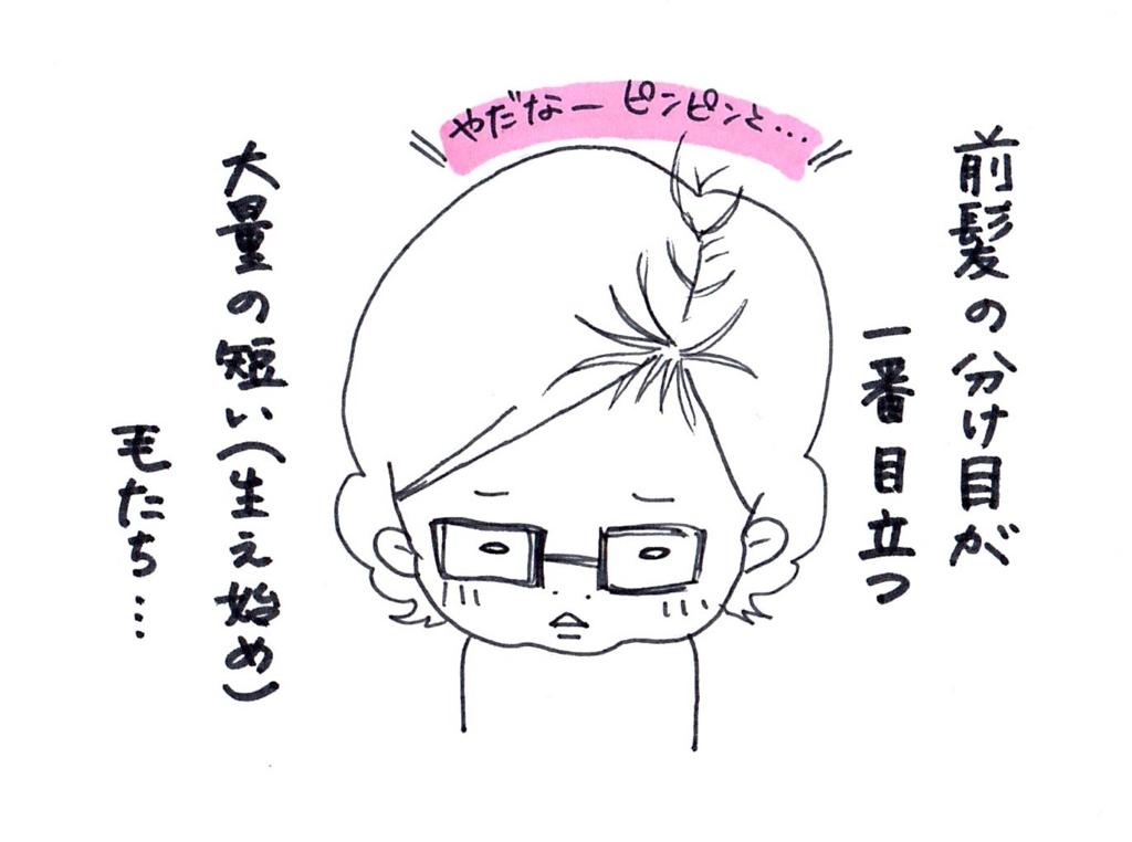 f:id:zuzukocha:20170325160409j:plain