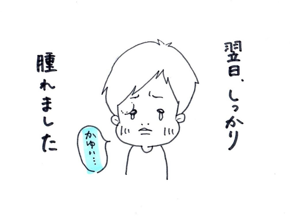 f:id:zuzukocha:20170621132540j:plain