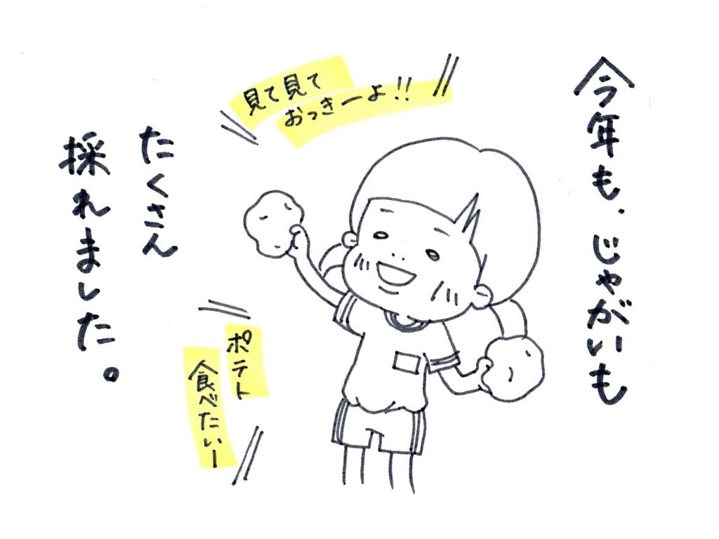 f:id:zuzukocha:20170621132604j:plain