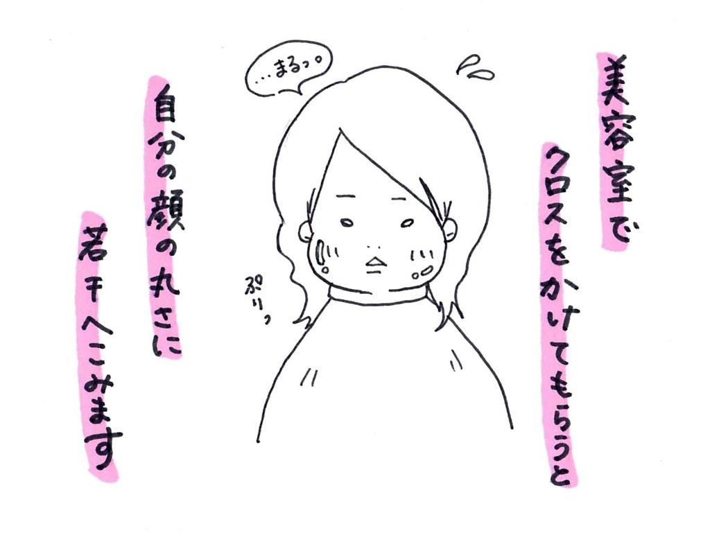 f:id:zuzukocha:20171115130305j:plain
