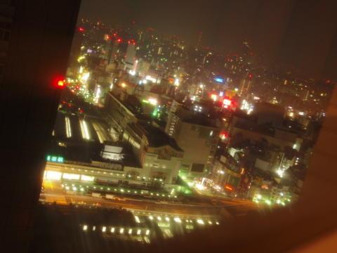 [新宿][夜景]