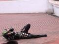 [仮面ライダー][カブト][キバ][ショー][電王]