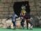 [仮面ライダー][ショー][ディケイド][キバ][響鬼]
