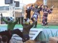 [仮面ライダー][オーズ][ショー]20110813@よみうりランド