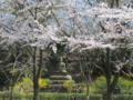 [風景]大仏@よみうりランド聖地公園