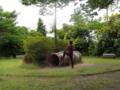 [プリキュア][風景]ちょうまんぴら公園